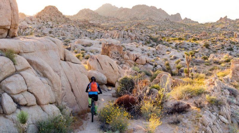 The Moab Portal - A Decent Descent