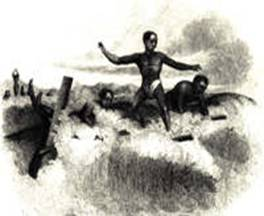 Surfing History Watersports History