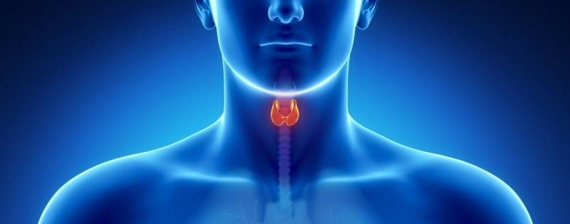 Thyroid Disorders Slide Show