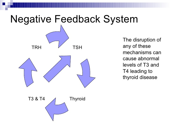 thyroid-disorders-11-728